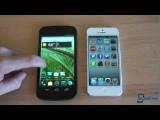iOS 6 vs. Jelly Bean